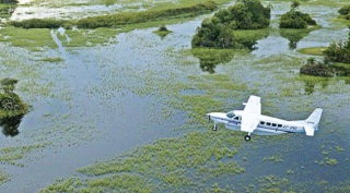 Fly in Luxury Safari Botswana