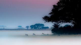 De drie belangrijkste parken in Zambia