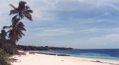 13 dagen - gamedrives in Tanzania met Zanzibar