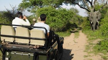 Zuid Afrika - Familiereis