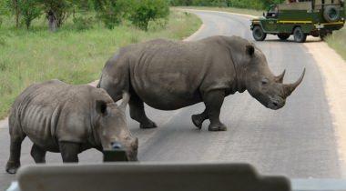 Groepsreis Zuid-Afrika, Swaziland & Lesotho
