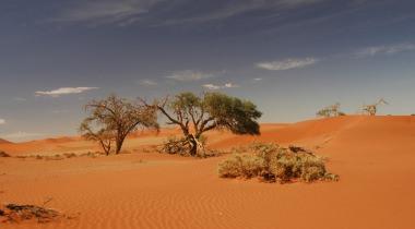 Rondreis Namibië