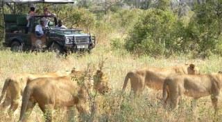 Tanzania - Zuid 12 daagse fly-in & Fanjove eiland