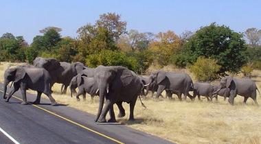 Groepsreis Zuidelijk Afrika - kampeerreis