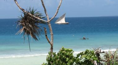 Budget safari Selous en Zanzibar
