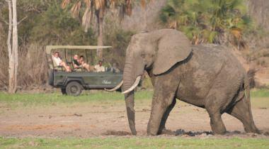 Luxe Safari Zuid-Tanzania