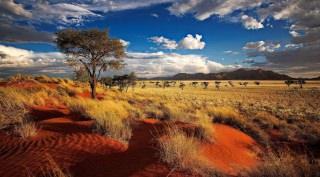 Rondreis Namibië Highlights