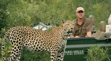 Best of Kruger