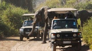 Verrassend & voordelig Botswana