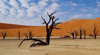 Nambië Highlights