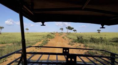 Maatwerk safari Tanzania 12-daags