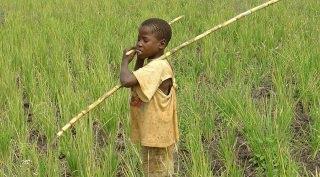 Oeganda - Familiereis