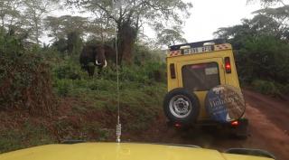14 DAAGSE REIS: NOORD EN ZUID TANZANIA