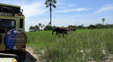 14 DAAGSE REIS: NOORD TANZANIA