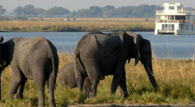 Luxe self drive door Namibië, Botswana en Victoria Falls