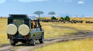 Namibië - budget reis op maat