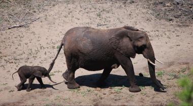 Namibië - 4WD rondreis
