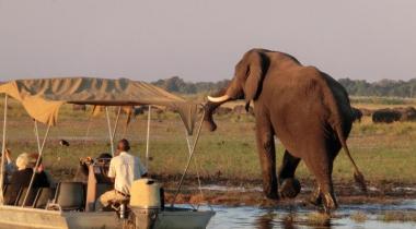 Namibië & Botswana cirkel - kamperen