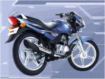 Buy TAIL PANEL STAR SPORTS ZADON on  % discount