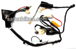 Buy WIRING HARNESS SHINE NM (2004 MODEL) SWISS on  % discount