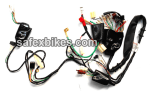 Buy WIRING HARNESS PASSION PRO ES SWISS on  % discount
