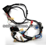 Buy WIRING HARNESS AVIATOR NM ES (2009 MODEL) (M.F. BATTERY) SWISS on  % discount