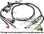 Buy WIRING HARNESS FLAME125 CC ES(Alloy wheel 2008 model)SWISS on  % discount