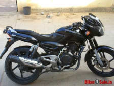 Buy TAIL PANEL PULSAR ZADON on 0 % discount
