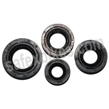 Buy OIL SEAL KIT AMBITION 135 on  % discount