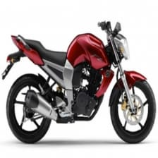Buy COMPLETE STICKER KIT FZS TYPE 2 ZADON on  % discount