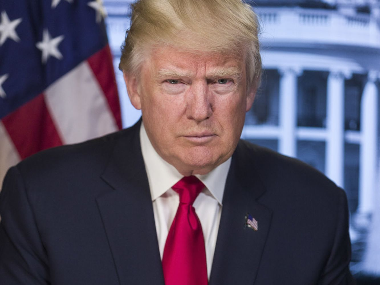 Donald trump official portrait weujmd
