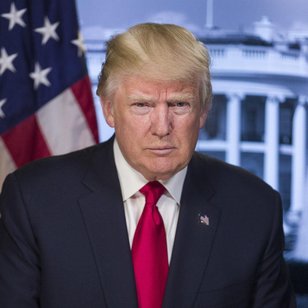 Donald trump official portrait weujmd