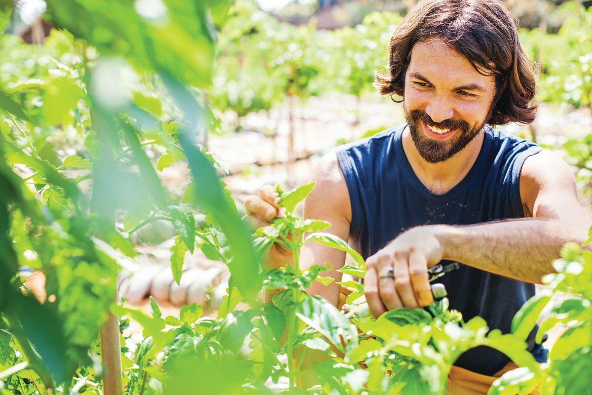 Gardening Feeds Your Body and Spirit