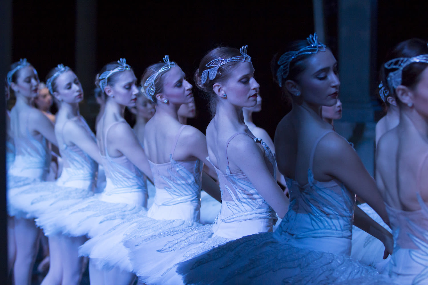 Swanlake2015 corps lt 152rawedit vbgjd1