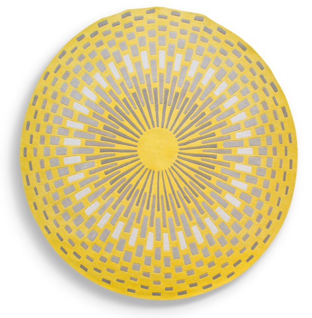1015 focus citron tapis det pdf ht jd2ffy