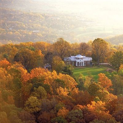 Monticello zbh70e