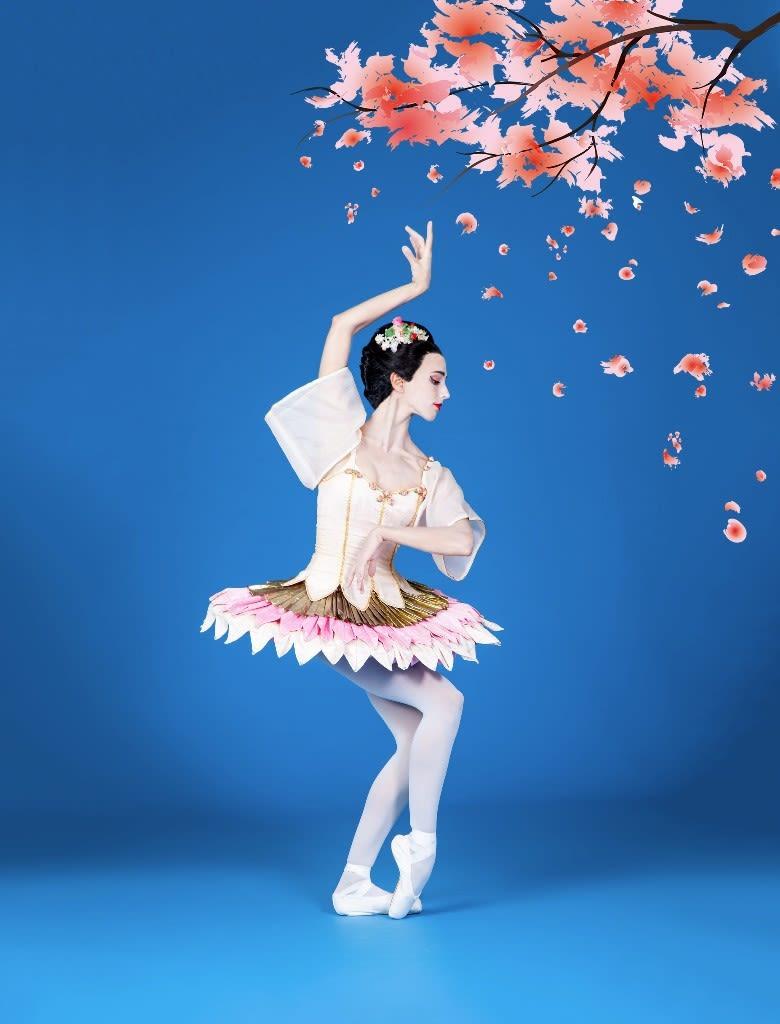 Sarasota ballet ellen overstreet cq5wlv