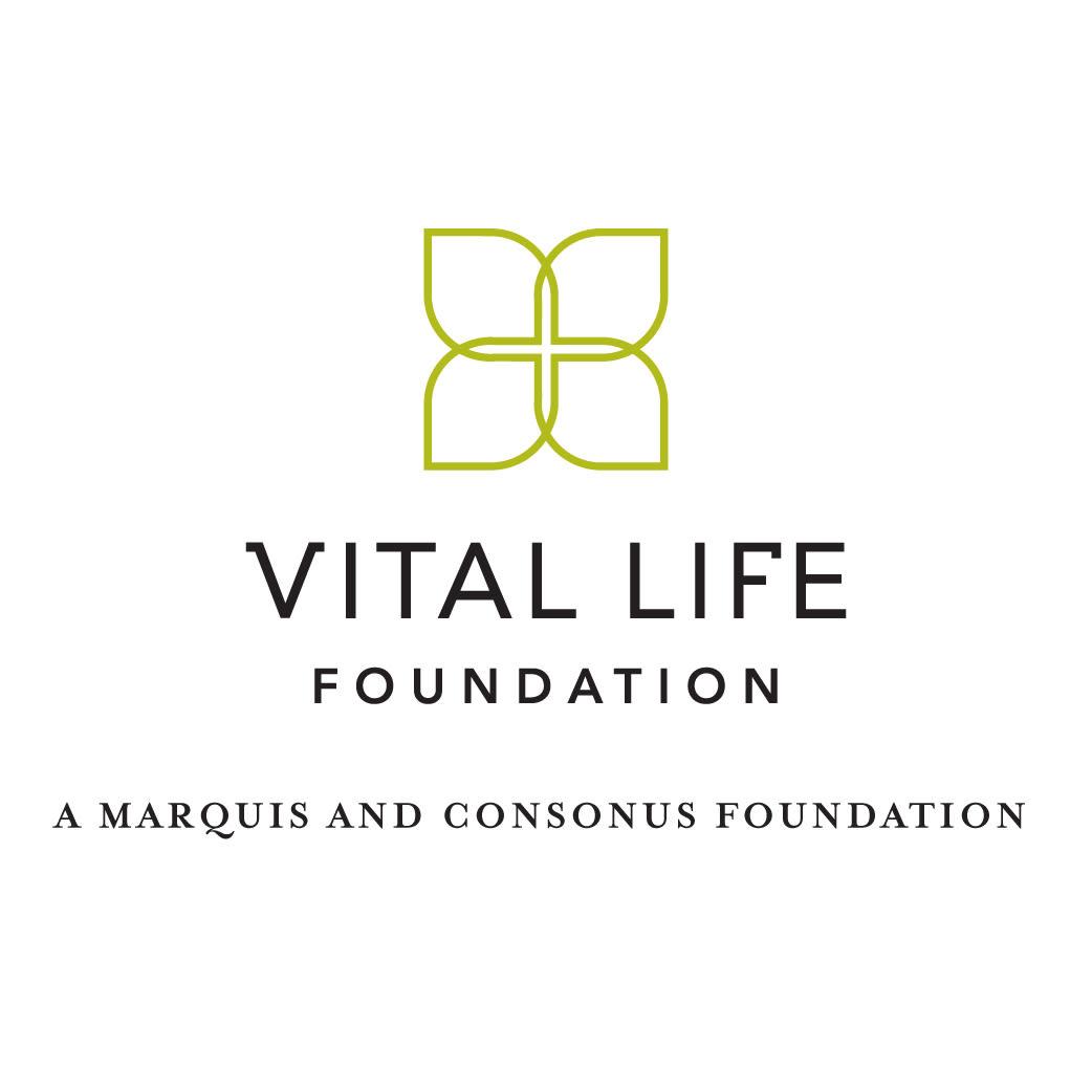 Vlf logolockup01 1  cbnqi3
