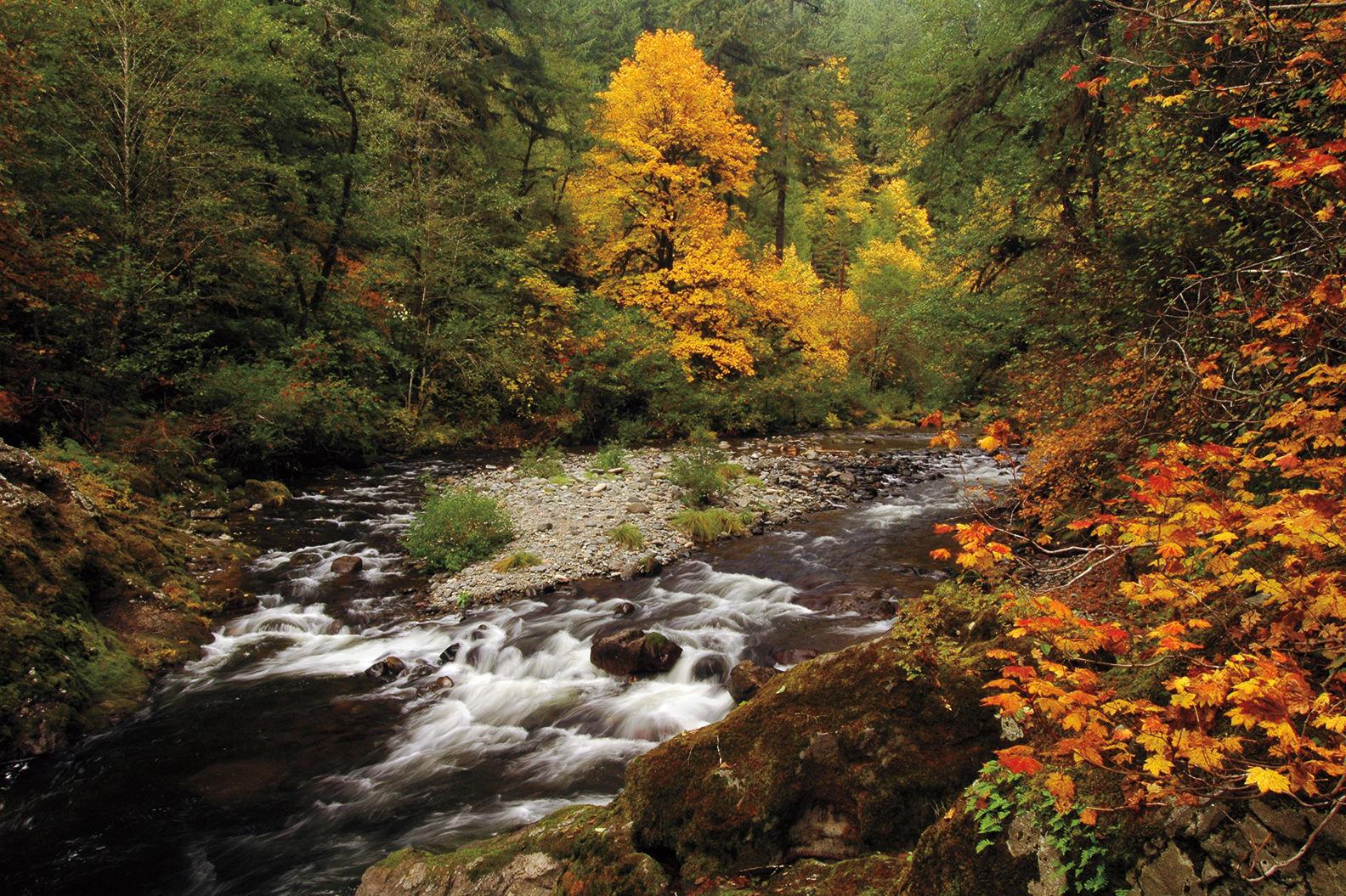 Fall creek by liefphotos.com zqsxsj