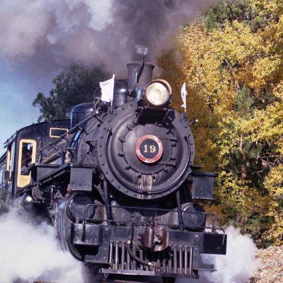 Foliage train 10 12 lukxto