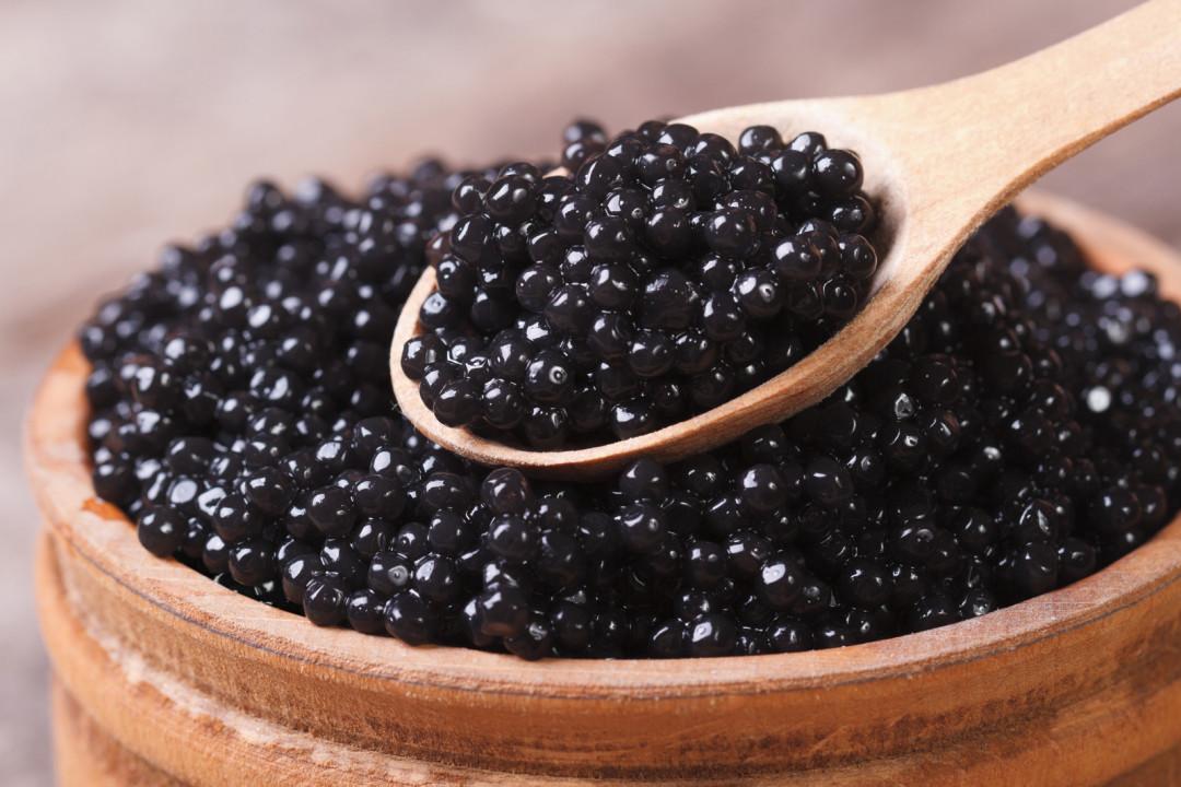 Sturgeon caviar hn2cx7