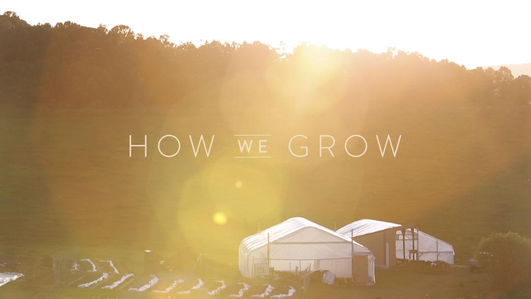 How we grow 24 howwegrow titlecard k7xc20