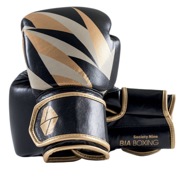 Da2017 trophy case boxing gloves j4376l