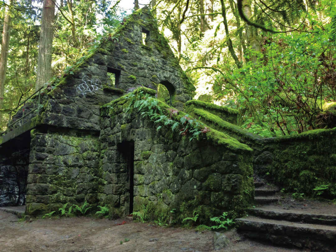 8 Essential Forest Park Hikes Portland Monthly