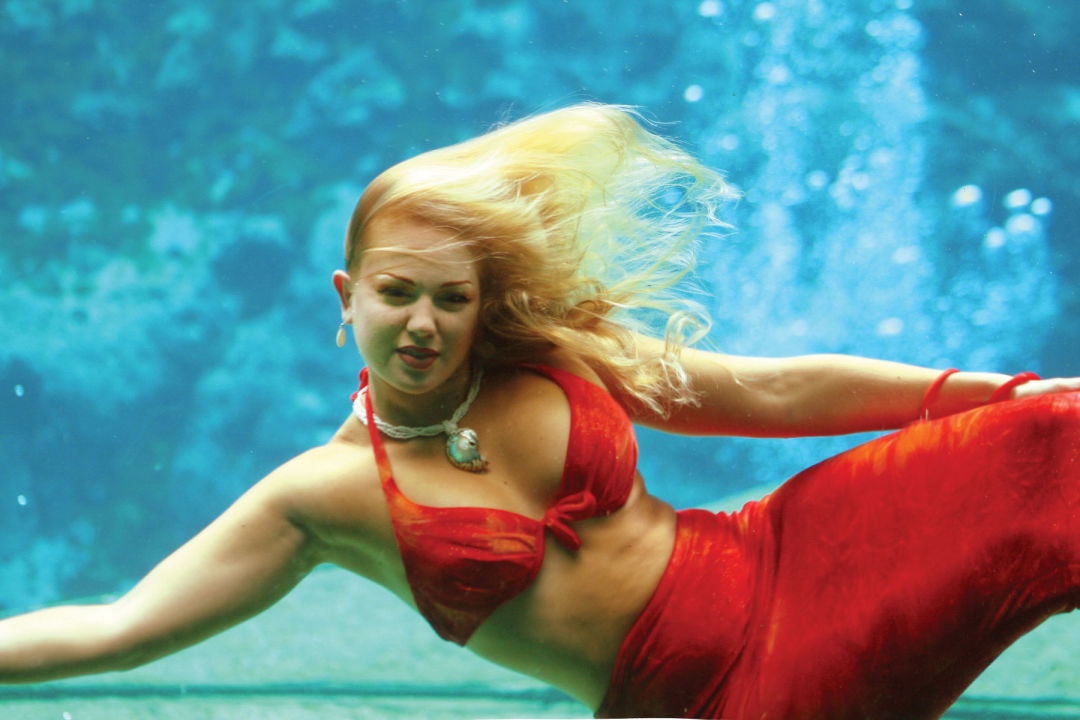 Weeki wachee mermaid show z1lteo