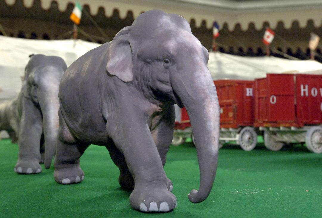 Elephants f5o6la