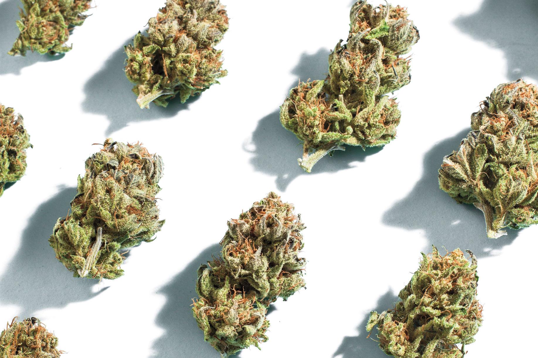 Weed f6nqa7