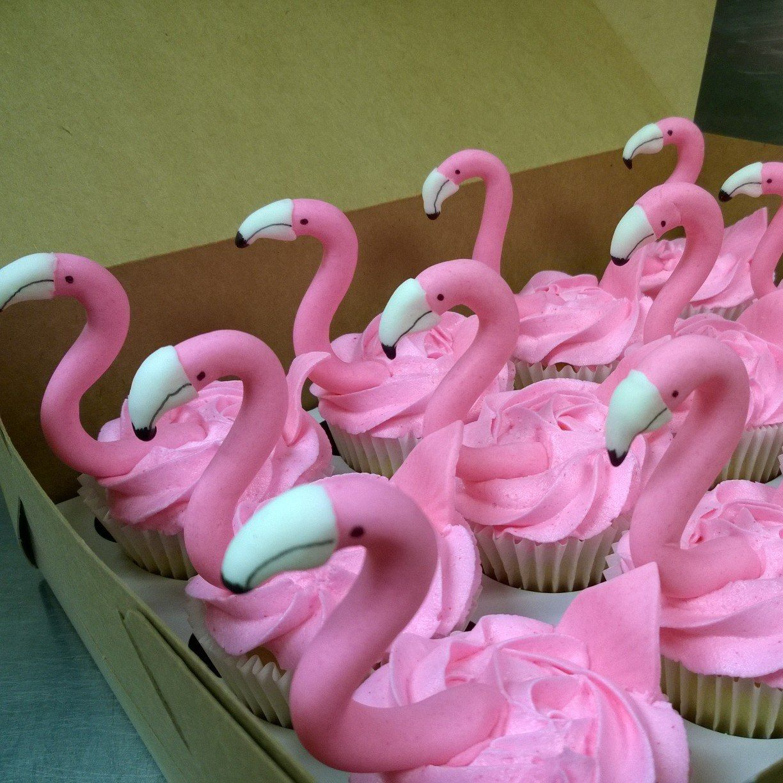 Cupcakesagogo xls9ob