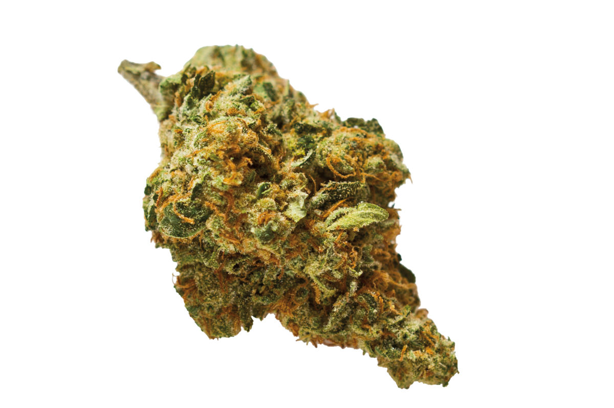 The Best Cannabis Strains for Any Occasion   Portland Monthly