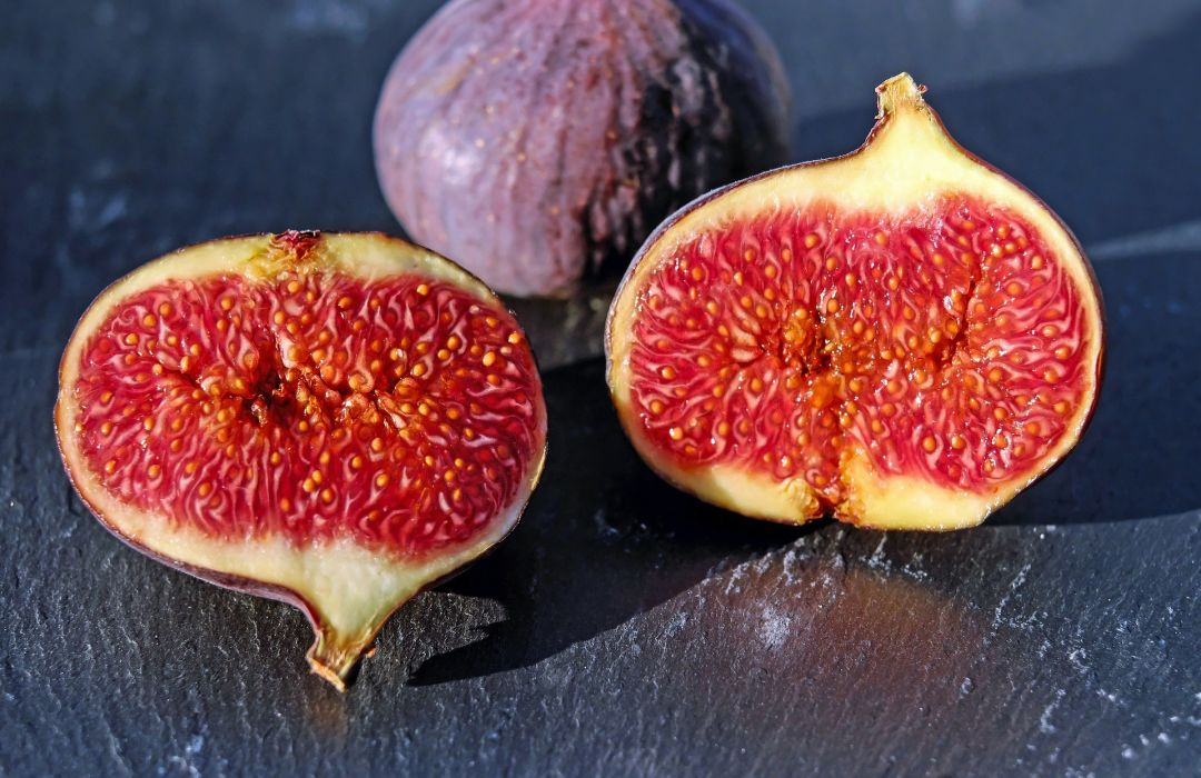 Fig photo from pixabay n5jh39